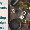 5 Key Ingredients for Marketing Campaign Success