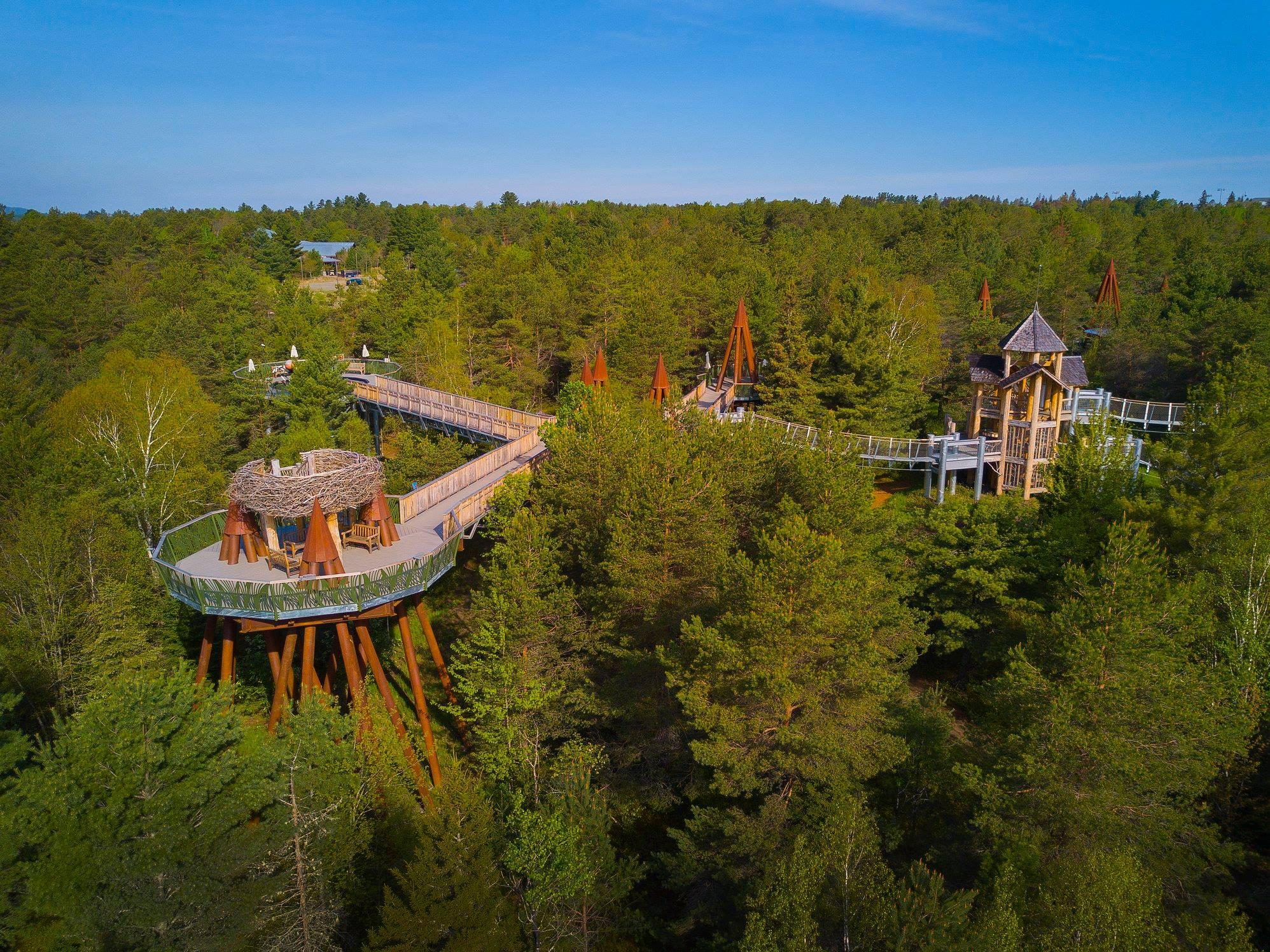 Wild Walk Aerial View